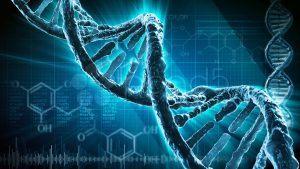 Мутации в ДНК