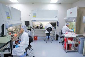 Институт органической химии имени Зелинского