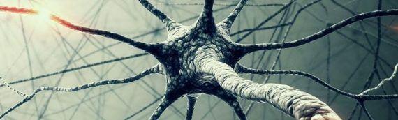 Рак головного мозга. Диагностика, прогноз и лечение