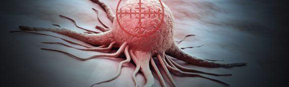 Найден способ уничтожать раковые клетки, оставляя в живых здоровые