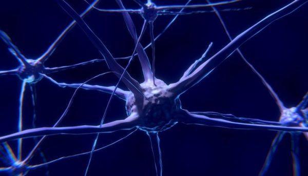 Инструмент, заставляющий дефектные клетки самоуничтожаться