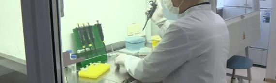 Ученые из Ростова-на-Дону создали новую технологию лечения рака почек