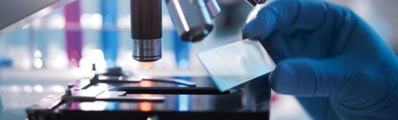Ученые нашли белок, убивающий рак