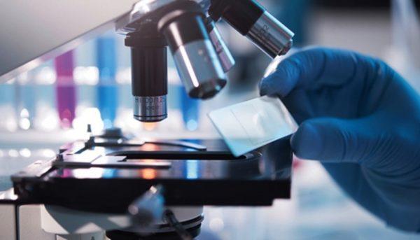 Ученые нашли белок, уничтожающий рак