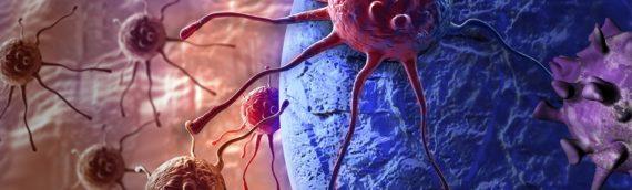 Биологи из России научились включать «починку ДНК» в раковых клетках