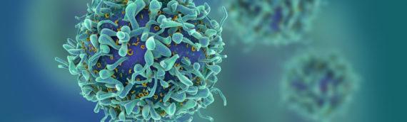 Раковые клетки запрограммировали на борьбу с опухолями